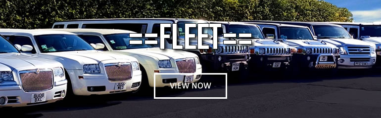 View limo hire airport transfers hire fleet